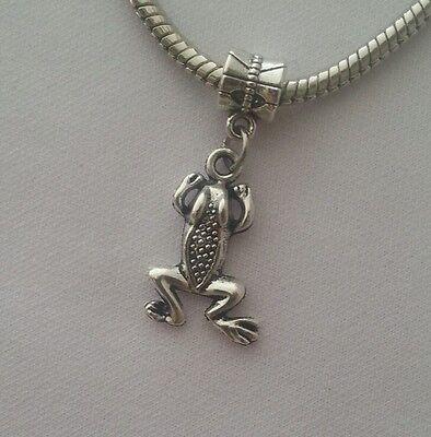 - Frog Road Animal Amphibian Dangle Bead For European Bracelet Or Clip On Charm