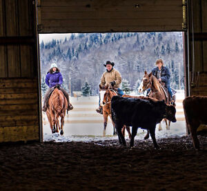Indoor & Outdoor Full-Service Horse Boarding & Riding Arena