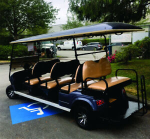 AGT Hobbit 6+2  Stretch LIMO Electric - Recreation Sport Carts