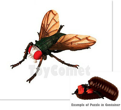 Giant House Fly Disgusting Bug Animal 4D 3D Puzzle Realistic Model Kit Toy (Giant Bug)