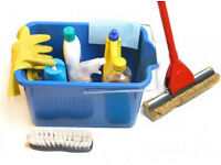 Professional and reliable cleaner for your home available immediately