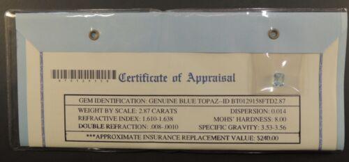 Gemstone Gem Stone Appraisal Genuine Blue Topaz 2.87 Carats COA $240 Square Nov