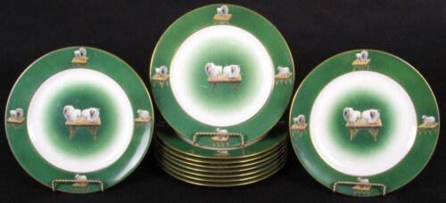 10 English Green Pomerian Dog Plates