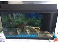 Jewel aquarium fish tank
