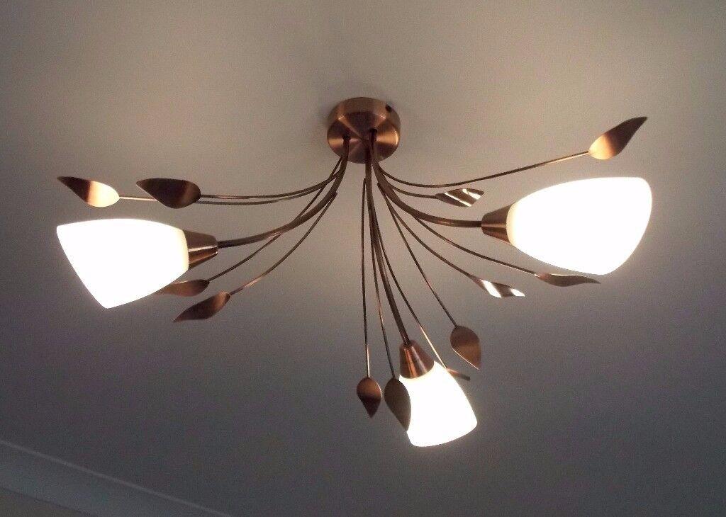 Francesca copper ceiling lights x 2 next in driffield east francesca copper ceiling lights x 2 next mozeypictures Images