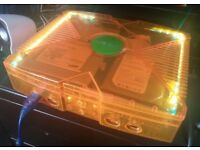 XBOX ORIGINAL CONSOLE GHOST CASE ORANGE 160GB 4000+ GAMES & LEDS & MORE RRP £150-£200+