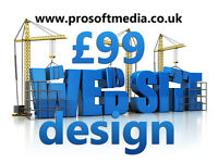 Professional Website Design and Development Starting from £99