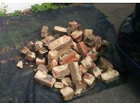 Recovered bricks