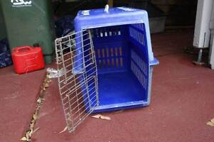 Pet travelling box Forster Great Lakes Area Preview