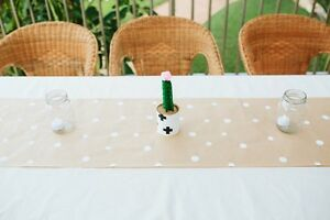 Party and Wedding Table Decorations: Mexican Cactus Terrigal Gosford Area Preview