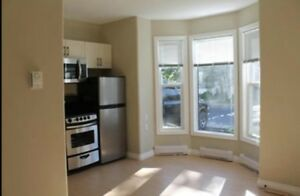 Rent, Buy or Advertise a Bachelor or Studio in Kingston ...