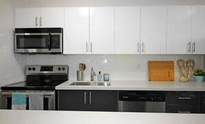 Updated 2 Bed in Hamilton! Fully Renovated Kitchen and More!