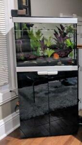 Aquarium Fluval Studio 33 Gallons avec plomberie interne