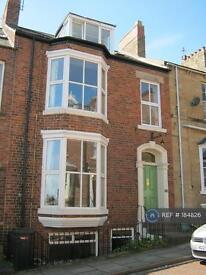 1 bedroom flat in Albert Street, Durham, DH1 (1 bed)