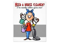 Domestic cleaning services, ironing, house keeping