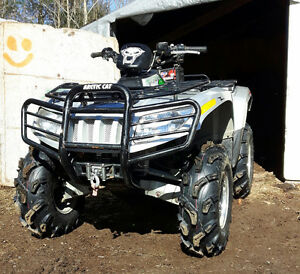 1000 THUNDERCAT ....Trade for a  Can-Am ??? Xmr or ???