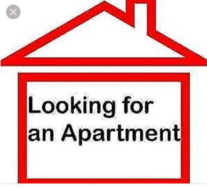 Looking For 1 Bdrm. Aptmt. for Oct 1 or Nov 1
