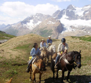 Horse Packing/Training/Trail Riding