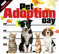 Pet Adoption Day - Sun. Oct. 18