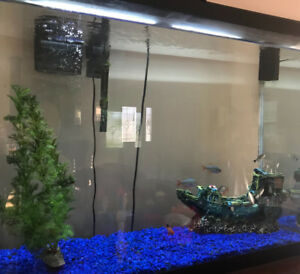Fish tank with fish, accessories, supplies, and all you need