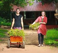 Supporting schools and sustainable farming in India