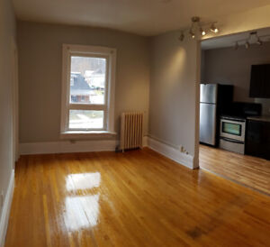 Newly Renovated 2 Bedroom Apt. downtown Owen Sound!!