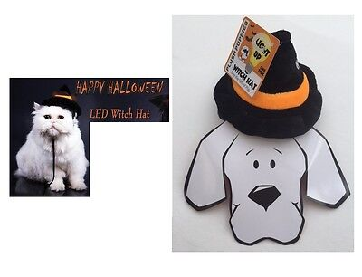 Halloween Pet Photos (HALLOWEEN LED Witch Hat for Dogs & Cats - S/M - Light up LED - Family)