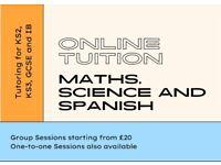 Online Maths, Science and Spanish Tutor for KS2, KS3, GCSE and IB