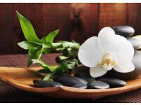 proffessional sweedish body massage