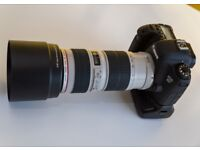 Canon EF 70-200mm f/4 L USM Lens - Great condition for sale.