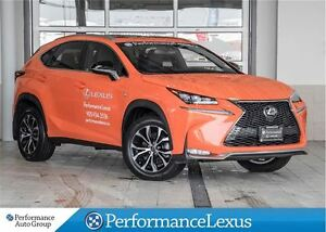 2017 Lexus NX 200t PREVIOUS COMPANY DEMO!