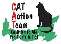CAT FOOD for feral/stray/barn cats under care of Cat Action Team