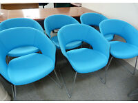 Designer Meeting Chairs - Blue & Black Visitor Chairs