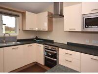 Brand New Lodge For Sale Nr Bridlington