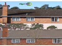 Professional Roof Cleaning, Roof Coating& Moss Removal - Quality and Affordable