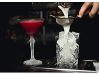 Experienced Cocktail BARTENDER - Crystal Palace