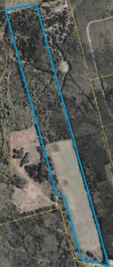 77.6 Acres. Mature woods and cultivated land