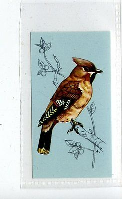 (Jd4179) TETLEY,BRITISH BIRDS,WAXWING,1970,#5