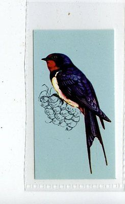 (Jd4195) TETLEY,BRITISH BIRDS,SWALLOW,1970,#13