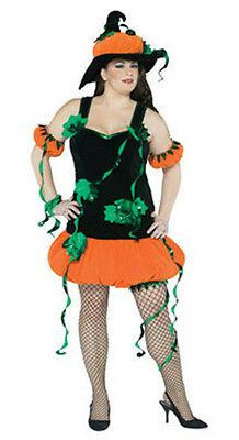 Pumpkin Witch Plus Size Adult Costume - Plus Size Adult Costume