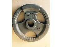2x15kg golds gym weight plates