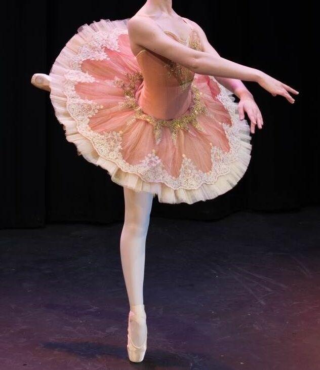 🇺🇸 Professional Ballet Tutu Vintage Pink Costume Aurora Bust 29-32 In Stock