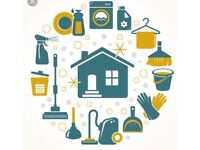 Domestic cleaner available Stowmarket Aspall Bacton and beyond
