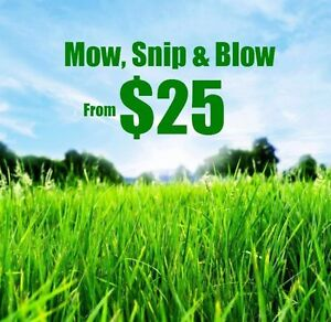 Lawnmowing and garden maintenance Calamvale Brisbane South West Preview