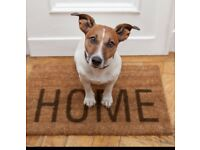 Dog Home Boarding for your pet by a vet!