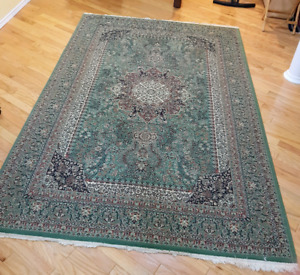 6.5x10 ft. Rug (GOOD CONDITION)