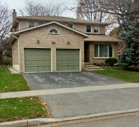 ###Very Clean and Neat Detached House For Rent###