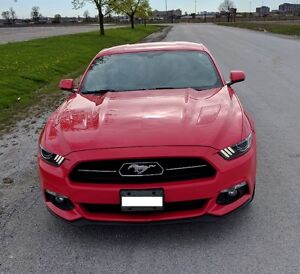 2015 Ford Mustang GT Premium 50th Anniversary Edition