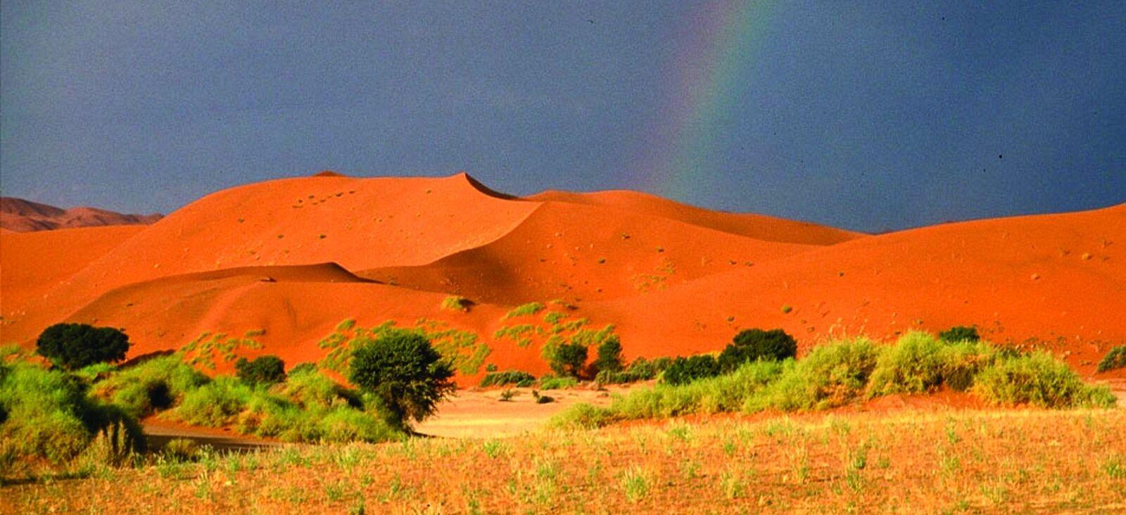 Namiba Terra
