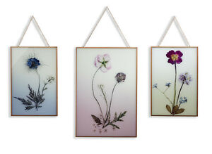 Wild Flowers Floral Pretty Set of 3 Copper Framed Printed Wall Art Pictures